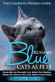 Russian Blue Cats as Pets - Thumbnail