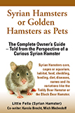 Syrian Hamsters or Golden Hamsters as Pets - Thumbnail